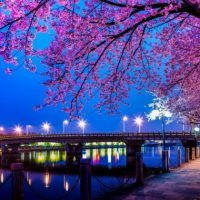 Yiwu-City-Entertainment-Best-Places-to-Go
